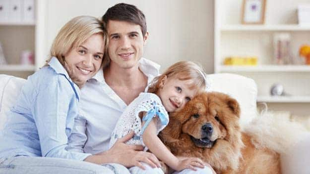 Wills & Trusts dog-young-family Direct Wills Hampton